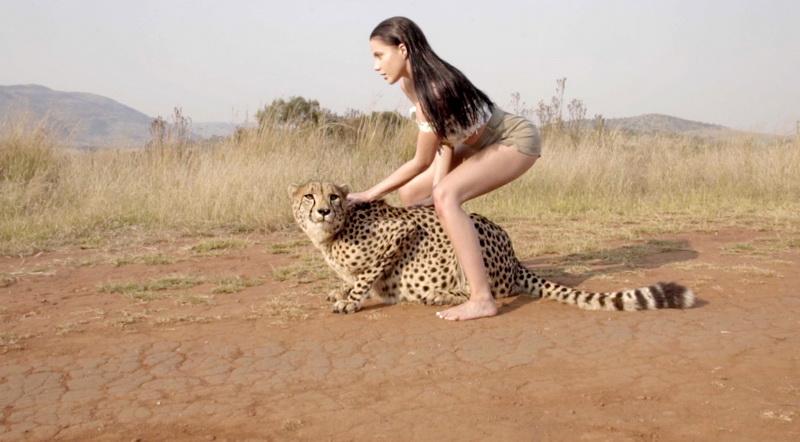 фото гепард с my ree